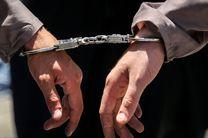 دستگیری ۲۲ سارق در بندرعباس