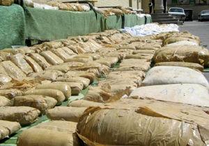 کشف محموله تریاک در جنگلهای حرای پارسیان/ دستگیری یک قاچاقچی تبعه افغانستان