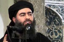 فرمانده ارشد ارتش آمریکا: البغدادی زنده است