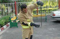 صید یک حلقه مار یک و نیم متری در حیاط منزل مسکونی در نایسر