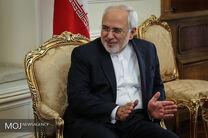 دیدار ظریف با وزیر مشاور در امور دولت هلند