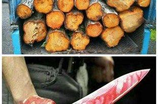 مجروح شدن مأمور منابعطبیعی با سلاح سرد توسط قاچاقچیان چوب