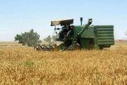 ۲۹۰ هزار هکتار از اراضی زراعی اردبیل به کشت گندم اختصاص یافته است