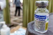 حواشی واکسن برکت،تحریف یا واقعیت؟