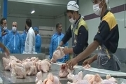 افتتاح واحد قطعه بندی کشتارگاه طیور در نجف آباد