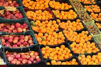 عرضه میوه عید در 140 غرفه فروش آذربایجان شرقی