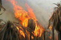 افزایش ۵۰ درصدی  آتش سوزی در مراتع هرمزگان
