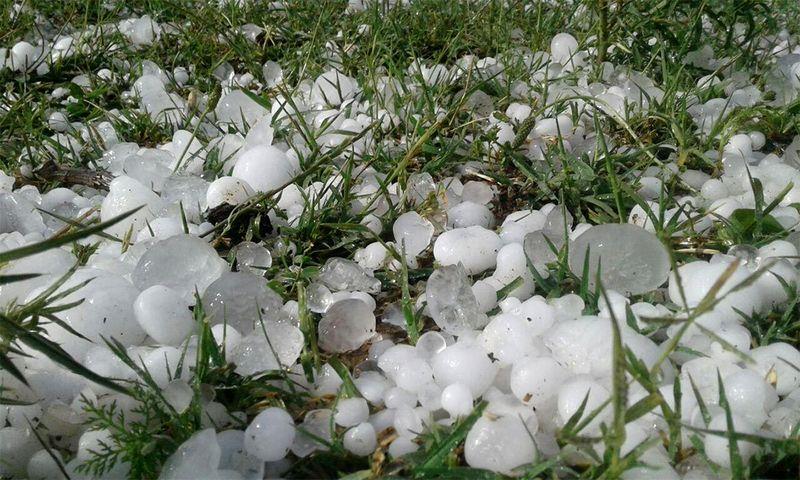 تگرگ و باران خسارت میلیاردی به کشاورزان اندیمشک وارد کرد