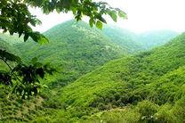 پایگاه میراث طبیعی جنگلهای هیرکانی تشکیل می شود