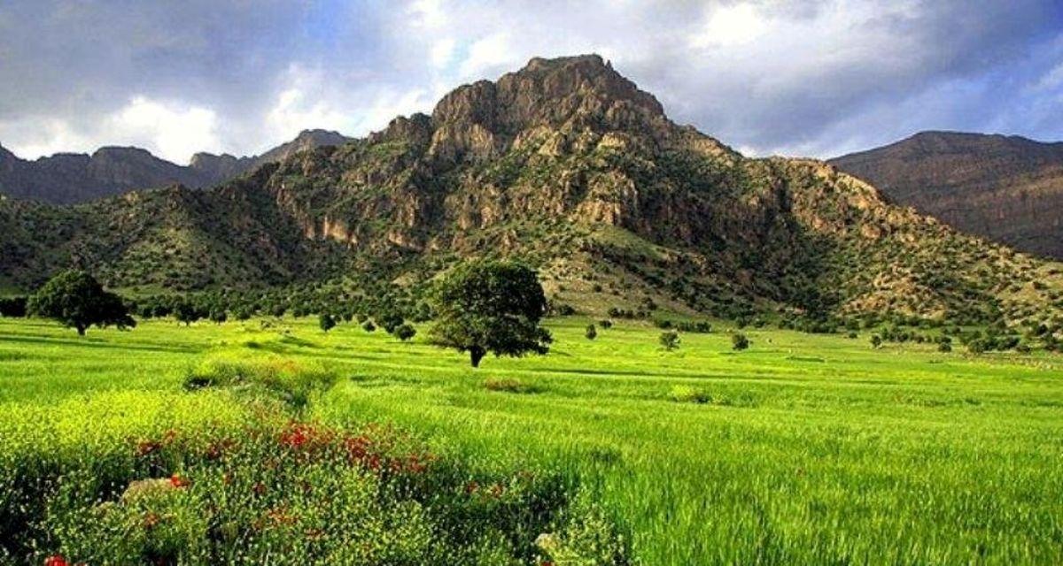 نگهداری پارک جنگلی اسدآباد به مناقصه گذاشته می شود؟