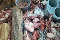 ۴۰۰ کیلوگرم گوشت فاسد در گرگان کشف شد
