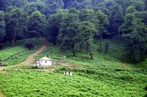 وجود 22 پارک جنگلی با مساحت بیش از 5هزار هکتار در مازندران