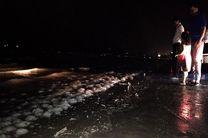 روشنایی بوستان های ساحلی همچنان قطع است /هیچ خدمتی به مسافران پاییزی در بندرعباس داده نمیشود