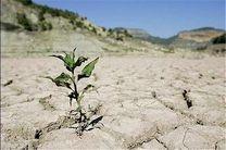 کاهش چشمگیر باران، در سال زراعی جاری خراسان رضوی