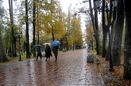 نفوذ سامانه سرد و بارشی به استان گیلان/ بارش باران در مناطق جلگه ای  و برف در مناطق کوهستانی