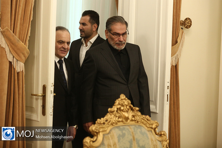 دیدار نخست وزیر سوریه با دبیر شورای عالی امنیت ملی