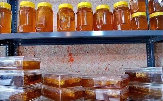 معدوم سازی حدود 500 کیلوگرم عسل غیر مجاز در خمینی شهر