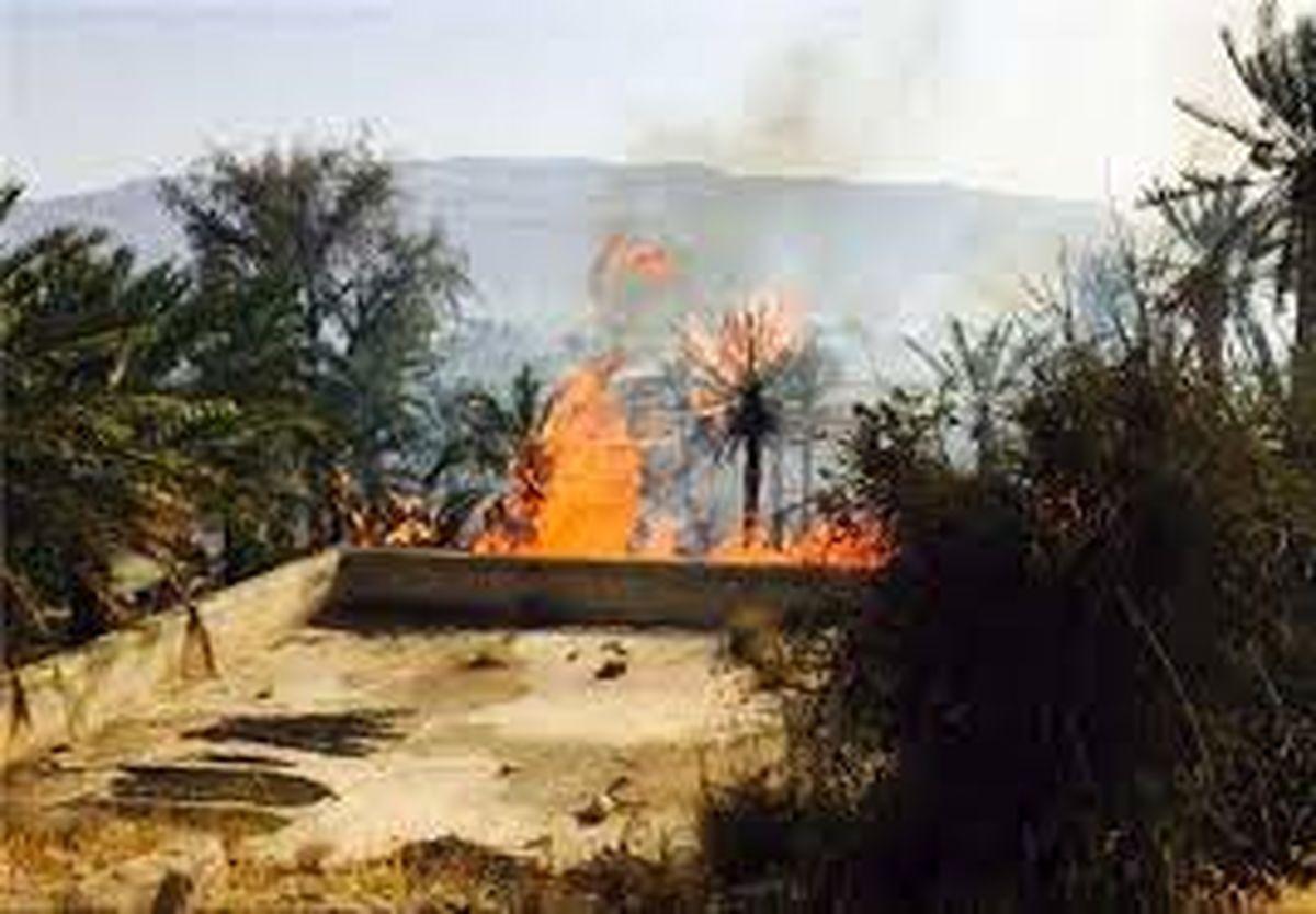 مهار آتش سوزی در دهستان سیاهو بندرعباس