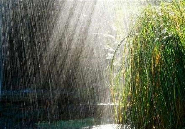 بارش ها 5 درصد  کمتر شد