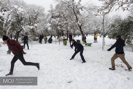 روز برفی تهران