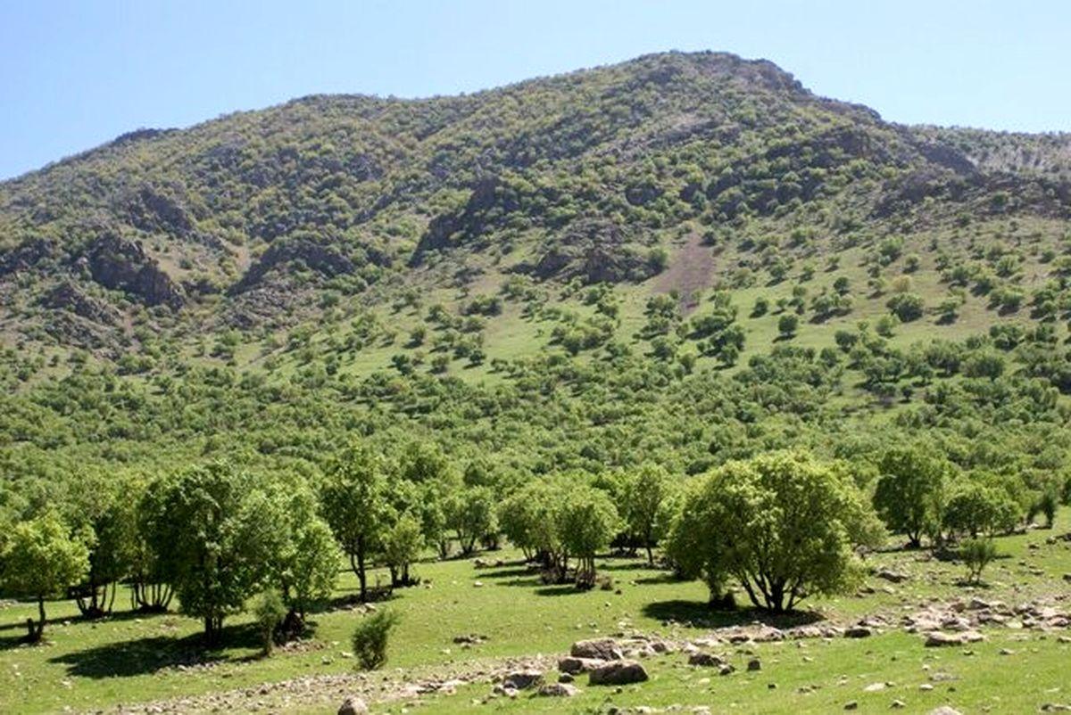 کاهش تخریب و تصرف و سوء استفاده از اراضی ملی در خراسان رضوی