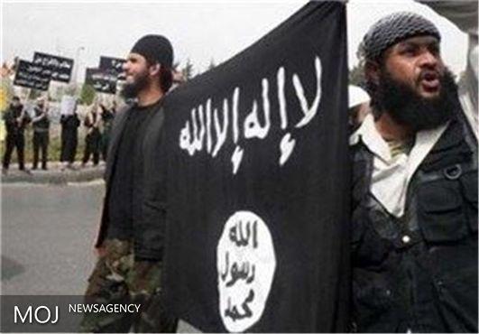 فتنههای مسلمانان زیر سر امارات است