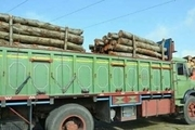 کشف چوب قاچاق فاقد مجوز