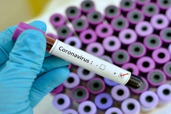 Iraq confirmed 4 new cases of Coronavirus