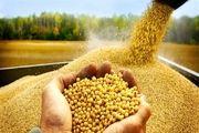 اصلاح سامانه بازارگاه نهاده های کشاورزی در دست پیگیری و اقدام است