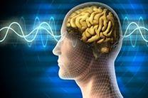 مدلسازی عملکرد مغز به وسیله تولید تراشه