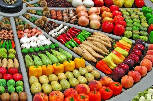 تا پایان سال جاری بیش از 50 هزار تن محصول جالیزی لرستان روانه بازار خواهد شد