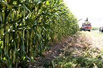 توانمندسازی کشاورزان و دامدارن در راستای تحقق اقتصاد مقاومتی